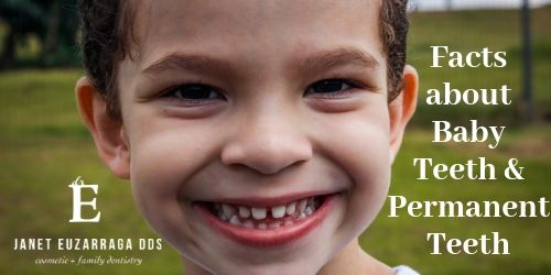 Fascinating Facts About Baby Teeth and Permanent Teeth